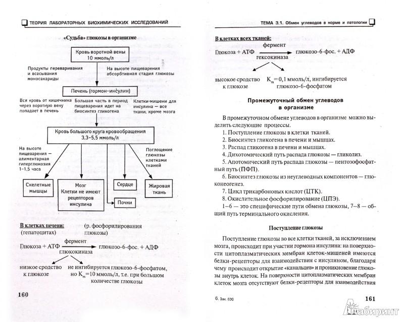 Иллюстрация 1 из 4 для Теория лабораторных биохимических исследований (основы биохимии) - Лидия Пустовалова | Лабиринт - книги. Источник: Лабиринт