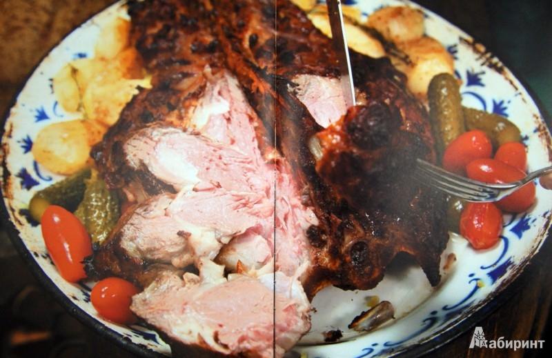 Иллюстрация 1 из 28 для Кухня открытого огня. Печь, тандыр, мангал, жаровня - Дмитрий Каневский | Лабиринт - книги. Источник: Лабиринт