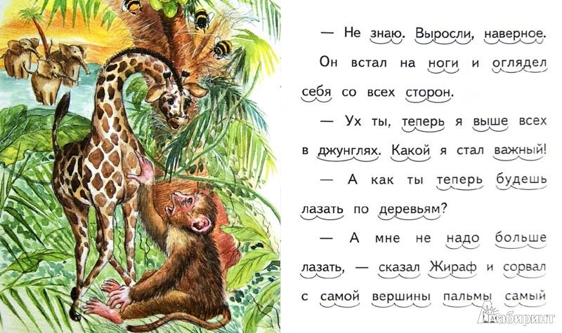 Иллюстрация 1 из 7 для Почему у жирафа длинная шея - Елена Ермолова | Лабиринт - книги. Источник: Лабиринт
