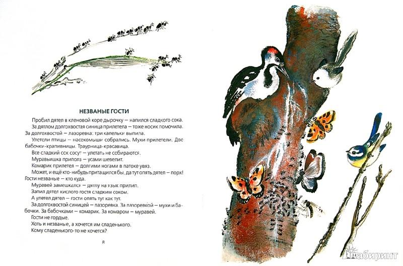 Иллюстрация 1 из 6 для Бежал ежик по дорожке - Николай Сладков | Лабиринт - книги. Источник: Лабиринт