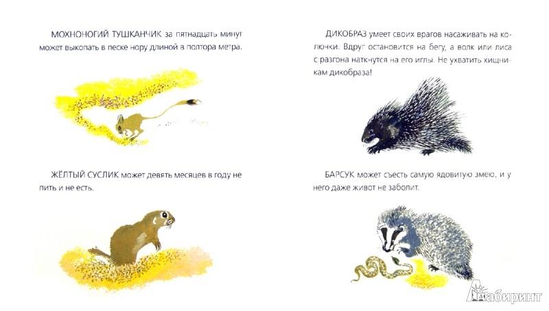 Иллюстрация 1 из 21 для Невидимки песков - Николай Сладков | Лабиринт - книги. Источник: Лабиринт