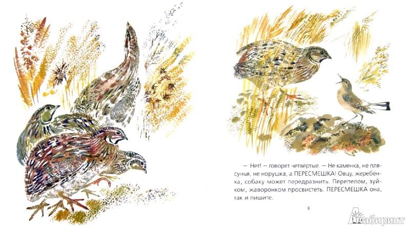 Иллюстрация 1 из 18 для Каменка-плясунья - Николай Сладков | Лабиринт - книги. Источник: Лабиринт