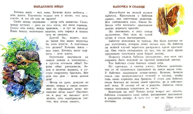Иллюстрация 1 из 19 для Лесные тайнички. Рассказы о природе - Николай Сладков | Лабиринт - книги. Источник: Лабиринт