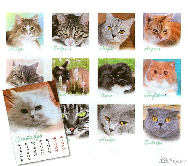 """Иллюстрация 1 из 3 для Календарь на магните на 2014 год """"Кошки""""   Лабиринт - сувениры. Источник: Лабиринт"""