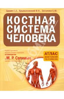 Костная система человека шу л радуга м энергетическое строение человека загадки человека сверхвозможности человека комплект из 3 книг