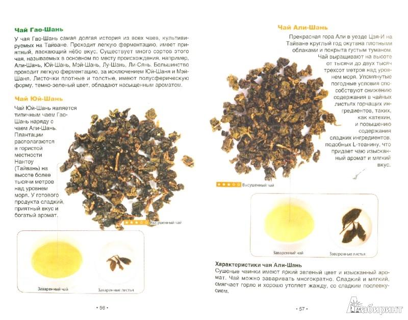 Иллюстрация 1 из 12 для Чай улун. Оцените китайский чай - Вэй Пань | Лабиринт - книги. Источник: Лабиринт
