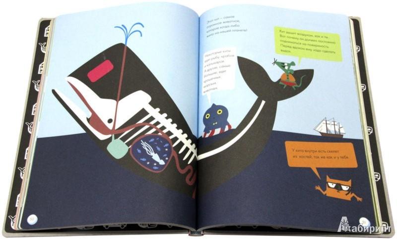 Иллюстрация 1 из 18 для Что внутри? - Софи Довуа | Лабиринт - книги. Источник: Лабиринт