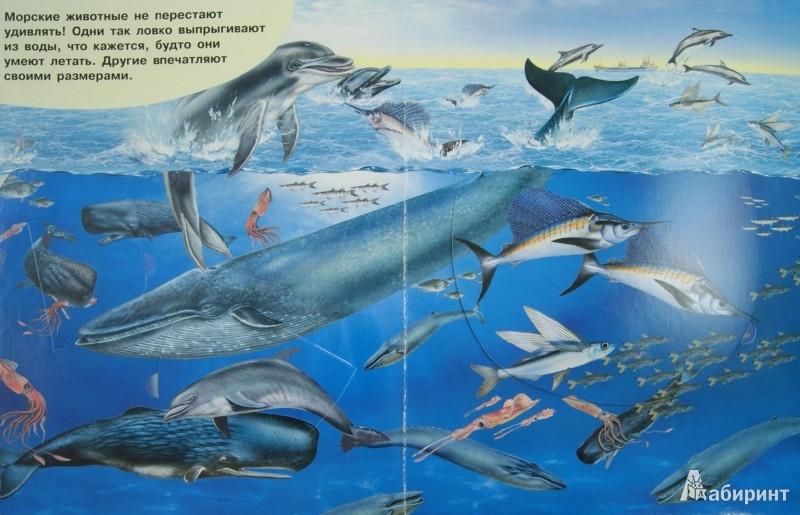 Иллюстрация 1 из 7 для Морские обитатели. Открывай и узнавай   Лабиринт - книги. Источник: Лабиринт