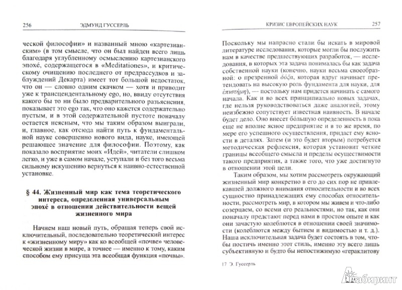 Иллюстрация 1 из 3 для Кризис европейских наук и трансцендентальная феноменология. Введение в феноменологическую философию - Эдмунд Гуссерль | Лабиринт - книги. Источник: Лабиринт