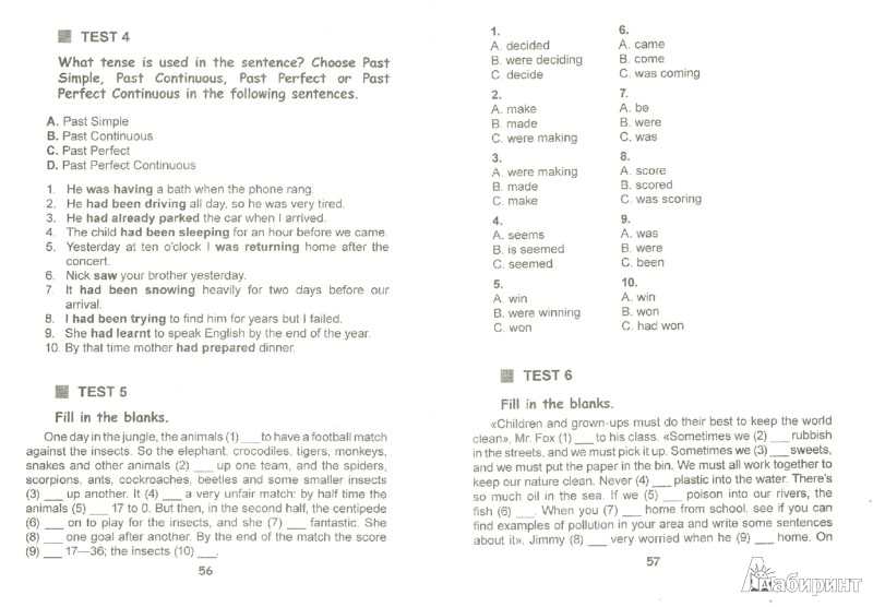 Иллюстрация 1 из 6 для Test your grammar. Сборник тестов по английскому языку за курс средней школы. Практикум | Лабиринт - книги. Источник: Лабиринт