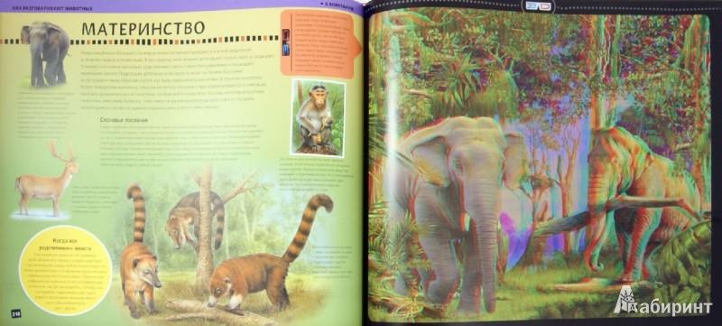 Иллюстрация 1 из 16 для Животные. Моя первая 3D энциклопедия (стереоочки) - Баголи, Шел | Лабиринт - книги. Источник: Лабиринт