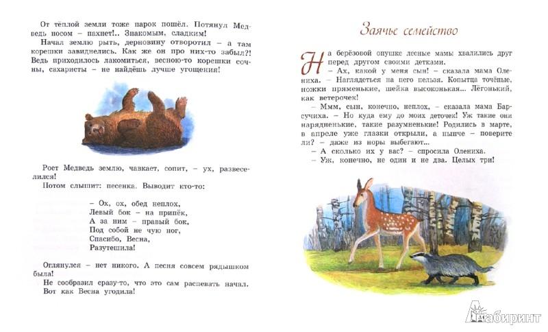 Иллюстрация 1 из 30 для Жук на ниточке - Эдуард Шим | Лабиринт - книги. Источник: Лабиринт