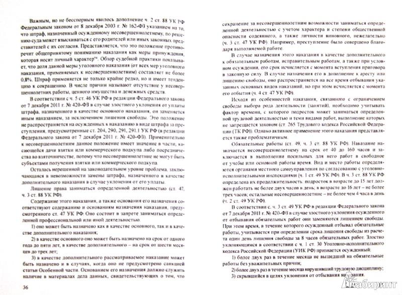 Иллюстрация 1 из 2 для Ювенальная юстиция - Александр Чашин   Лабиринт - книги. Источник: Лабиринт
