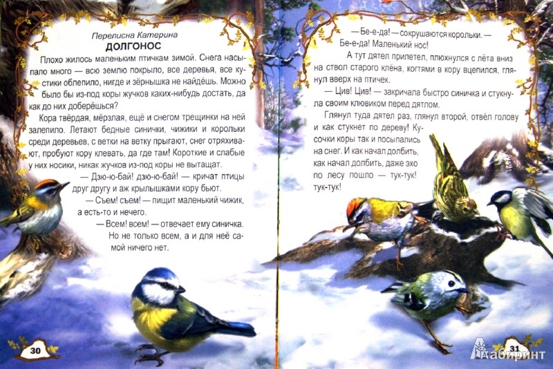 Иллюстрация 1 из 15 для Ребятам о зверятах | Лабиринт - книги. Источник: Лабиринт