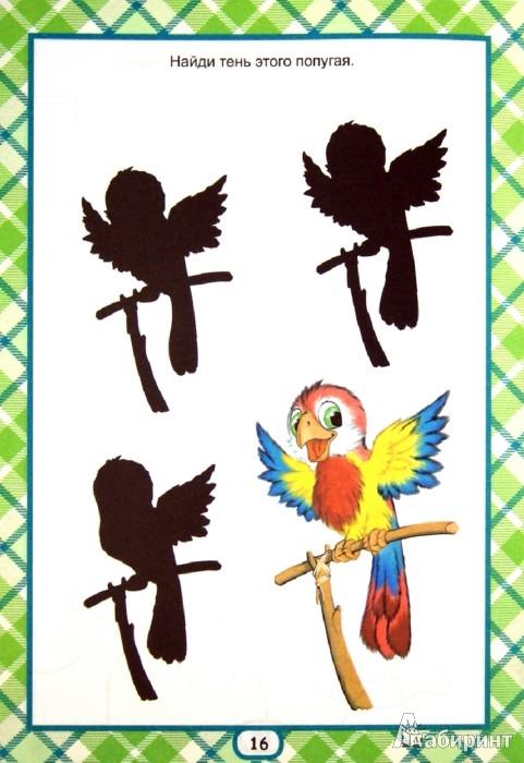 Иллюстрация 1 из 17 для Развиваем внимание (для детей от 3-х лет) | Лабиринт - книги. Источник: Лабиринт