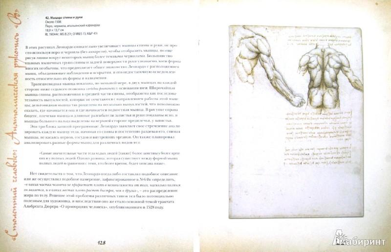 Иллюстрация 1 из 43 для Анатомия Леонардо - Мартин Клейтон   Лабиринт - книги. Источник: Лабиринт