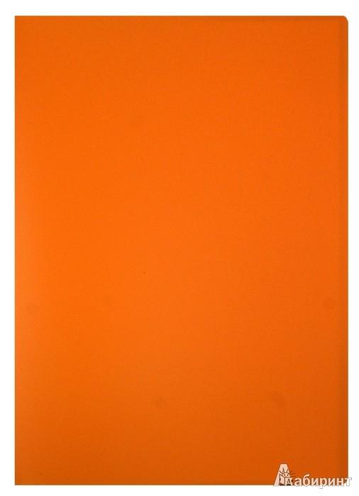 Иллюстрация 1 из 5 для Папка 20 файлов, А4, пластиковая, оранжевая (CY1422-O) | Лабиринт - канцтовы. Источник: Лабиринт