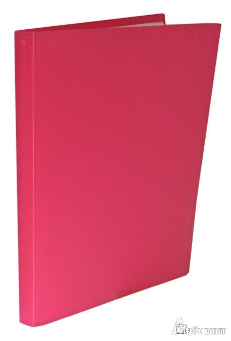 Иллюстрация 1 из 16 для Папка 60 файлов, А4, пластиковая, красная (CY1426-R)   Лабиринт - канцтовы. Источник: Лабиринт