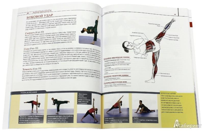 Иллюстрация 1 из 9 для Анатомия боевых искусств - Чоу, Линк | Лабиринт - книги. Источник: Лабиринт