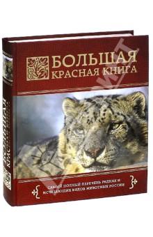 Большая красная книга бологова в моя большая книга о животных 1000 фотографий