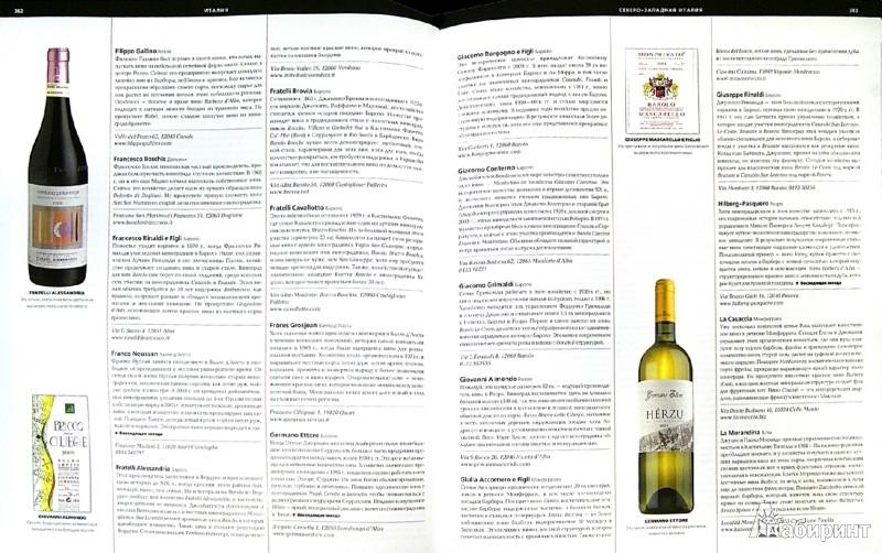 Иллюстрация 1 из 9 для Библия вина | Лабиринт - книги. Источник: Лабиринт
