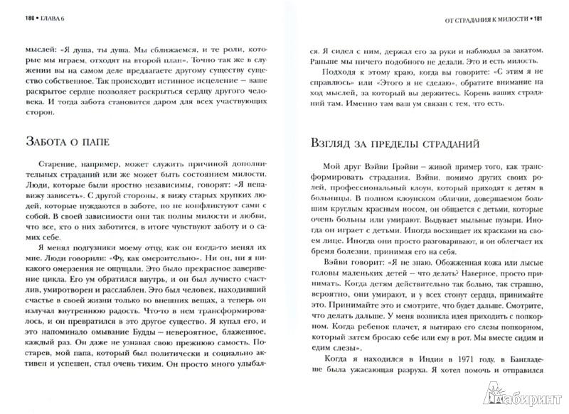 Иллюстрация 1 из 11 для Полировка зеркала. Как жить из своего духовного сердца - Рам Даас | Лабиринт - книги. Источник: Лабиринт