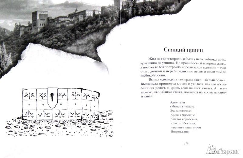 Иллюстрация 1 из 6 для Зеленая Роза или Двенадцать вечеров. Испанские народные сказки   Лабиринт - книги. Источник: Лабиринт