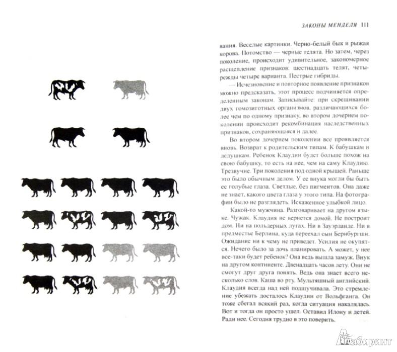 Иллюстрация 1 из 15 для Шея жирафа - Юдит Шалански | Лабиринт - книги. Источник: Лабиринт
