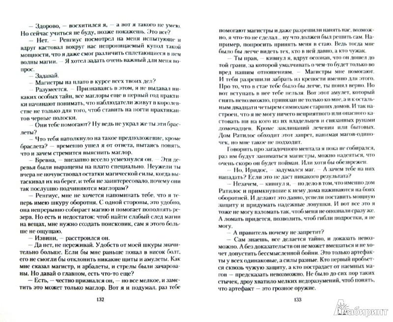 Иллюстрация 1 из 16 для Подруга для мага - Вера Чиркова | Лабиринт - книги. Источник: Лабиринт
