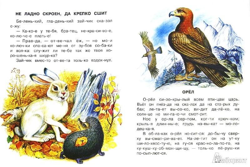 Иллюстрация 1 из 33 для Маленькие рассказы - Константин Ушинский | Лабиринт - книги. Источник: Лабиринт