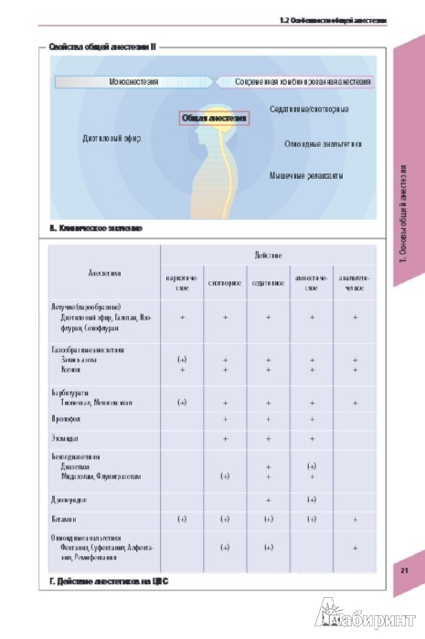 атлас по анестезиологии норберт ревер хольгер тиль