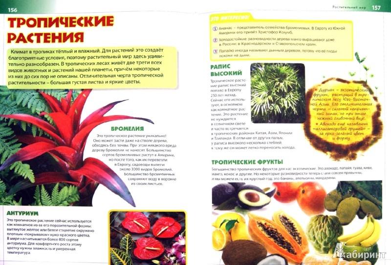 Иллюстрация 1 из 7 для Новая детская энциклопедия | Лабиринт - книги. Источник: Лабиринт