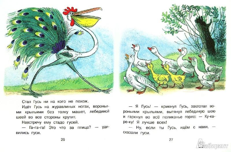Иллюстрация 1 из 8 для Это что за птица? - Владимир Сутеев   Лабиринт - книги. Источник: Лабиринт
