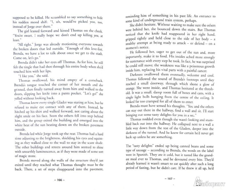 Иллюстрация 1 из 23 для The Scorch Trials - James Dashner | Лабиринт - книги. Источник: Лабиринт