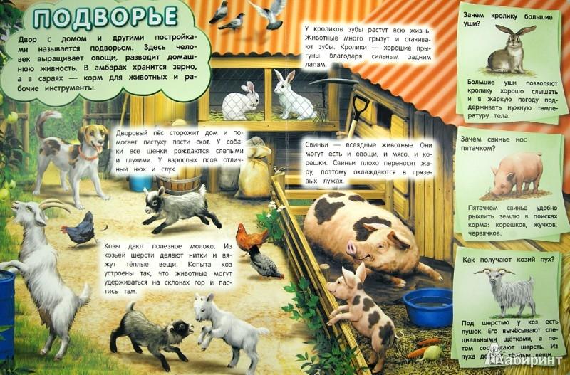Иллюстрация 1 из 3 для Домашние животные - Дарья Тарасик | Лабиринт - книги. Источник: Лабиринт