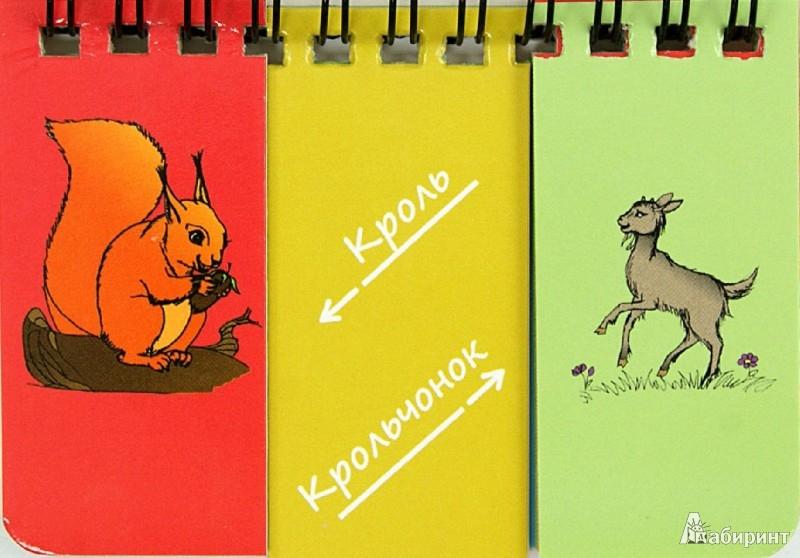 Иллюстрация 1 из 13 для Чей? Найди пару   Лабиринт - книги. Источник: Лабиринт