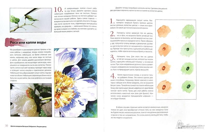 Иллюстрация 1 из 6 для Рисуем цветы. Пошаговый самоучитель по рисованию акварелью - Либралато, Лаптева | Лабиринт - книги. Источник: Лабиринт