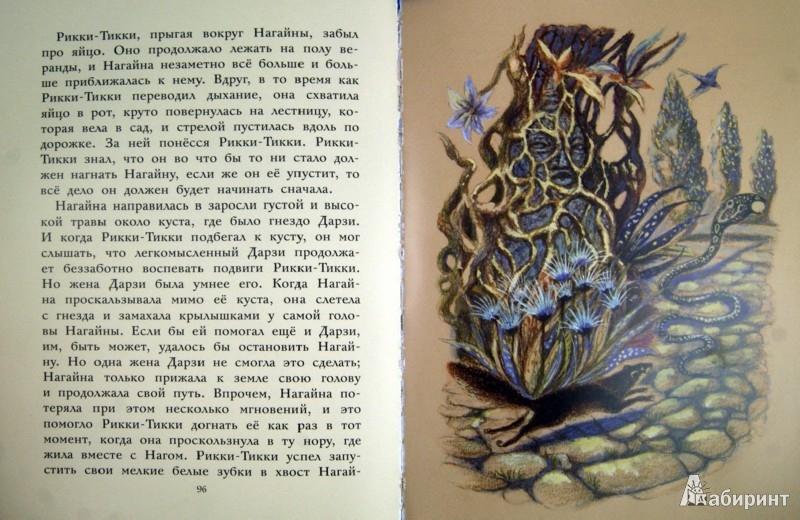 Иллюстрация 1 из 18 для Сказки - Редьярд Киплинг | Лабиринт - книги. Источник: Лабиринт