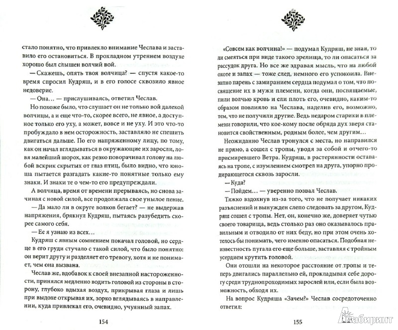 Иллюстрация 1 из 7 для Чеслав. Ловец тени - Валентин Тарасов | Лабиринт - книги. Источник: Лабиринт