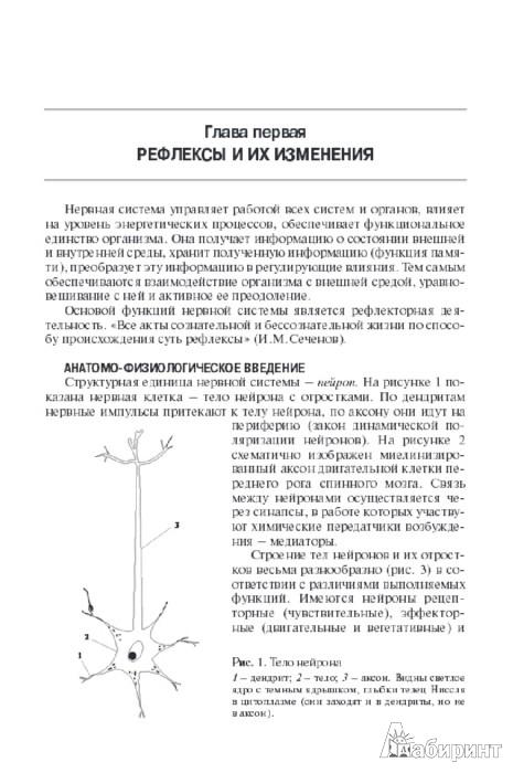 Иллюстрация 1 из 14 для Топическая диагностика заболеваний нервной системы - Александр Триумфов | Лабиринт - книги. Источник: Лабиринт