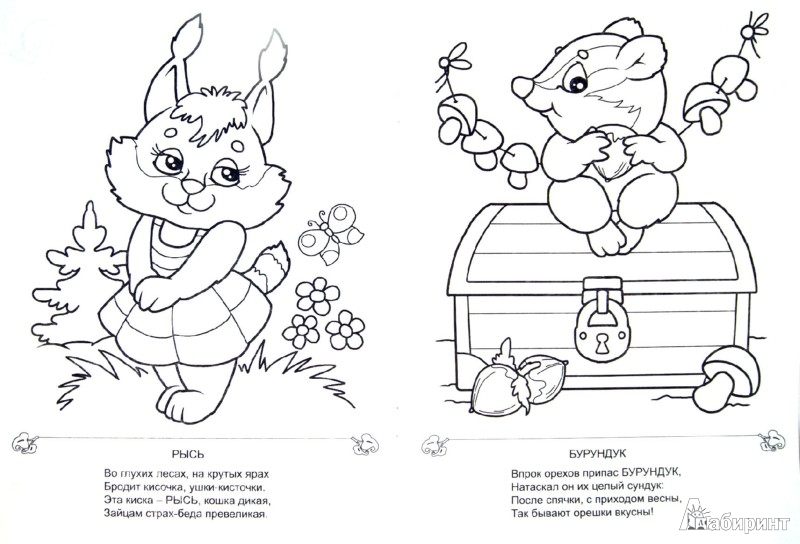 Иллюстрация 1 из 10 для Пушистые шубки - Евгений Адарич | Лабиринт - книги. Источник: Лабиринт