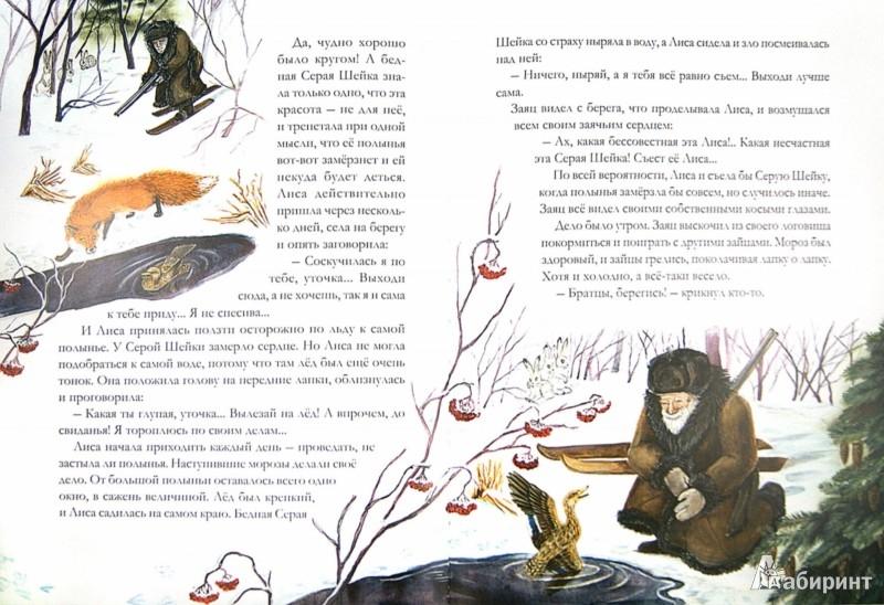 Иллюстрация 1 из 10 для Серая Шейка и другие сказки - Дмитрий Мамин-Сибиряк | Лабиринт - книги. Источник: Лабиринт