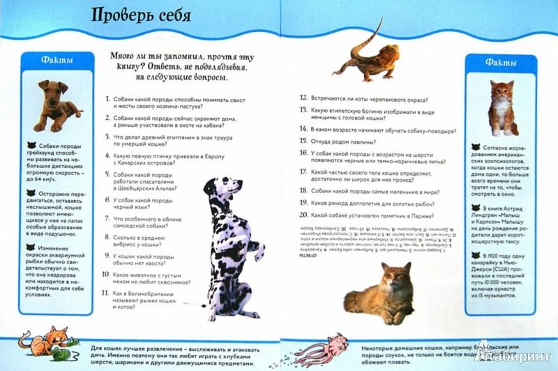 Иллюстрация 1 из 16 для Домашние питомцы. Animal Planet | Лабиринт - книги. Источник: Лабиринт