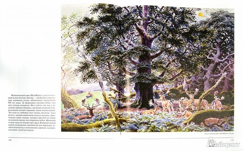 Иллюстрация 1 из 50 для Среди льдов и джунглей | Лабиринт - книги. Источник: Лабиринт