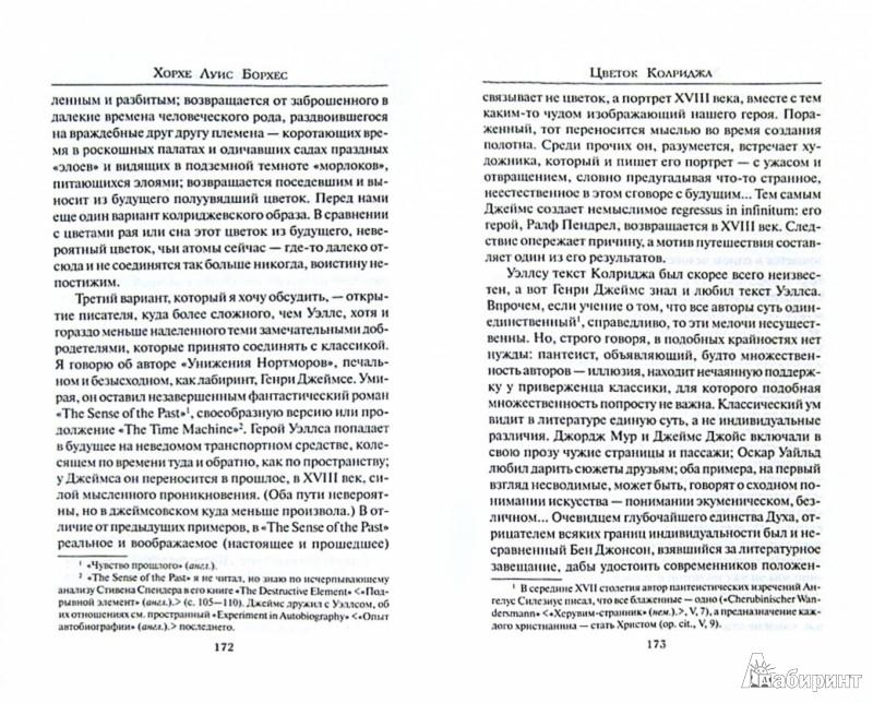 Иллюстрация 1 из 30 для Зеркало загадок - Хорхе Борхес | Лабиринт - книги. Источник: Лабиринт