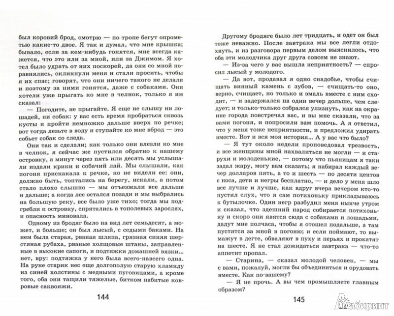 Иллюстрация 1 из 18 для Приключения Гекльберри Финна - Марк Твен   Лабиринт - книги. Источник: Лабиринт