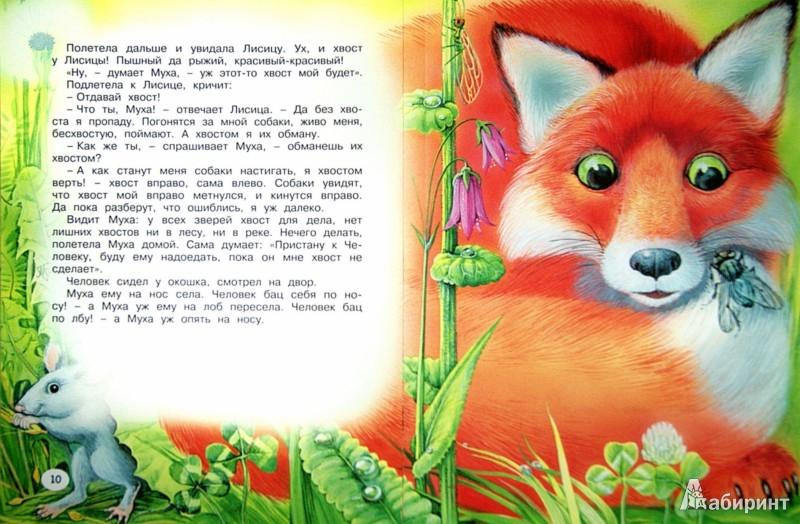 Иллюстрация 1 из 25 для Хвосты - Виталий Бианки | Лабиринт - книги. Источник: Лабиринт