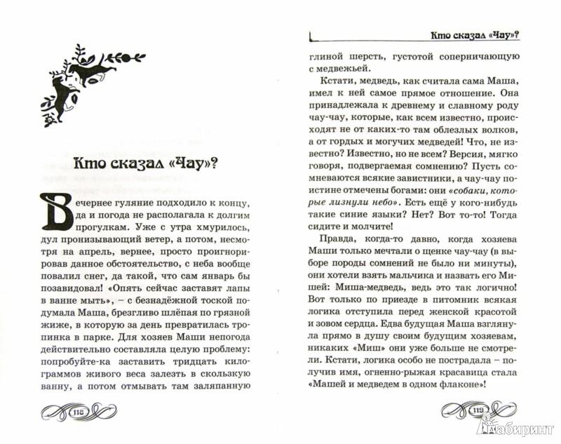 Иллюстрация 1 из 7 для Хвост судьбы - Лана Мациевская | Лабиринт - книги. Источник: Лабиринт