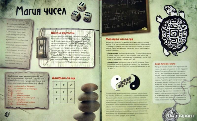 Иллюстрация 1 из 7 для Фэн шуй. Практикум по приручению драконов - Юлия Фомина | Лабиринт - книги. Источник: Лабиринт