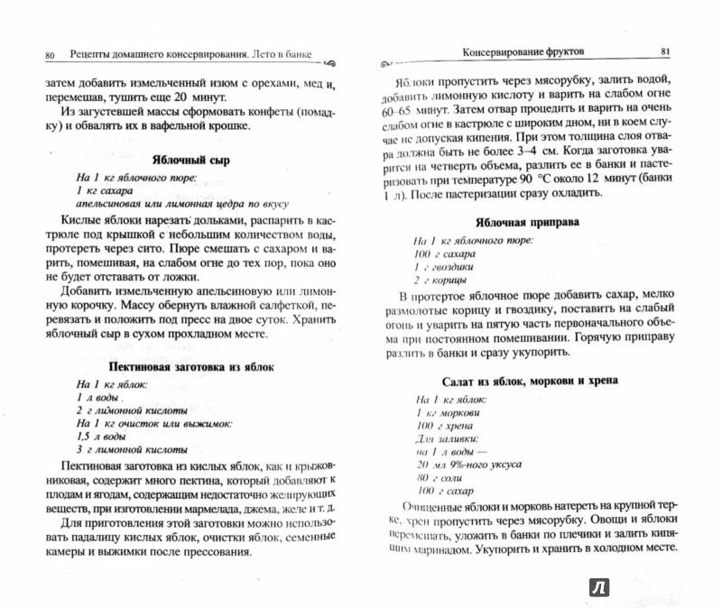 Иллюстрация 1 из 5 для Рецепты домашнего консервирования: Лето в банке | Лабиринт - книги. Источник: Лабиринт